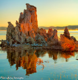 Mono Lake Tufa Sunrise