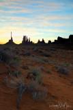 Desert Flowers @ The Totems