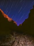 Fern Glen Star Trail - River Mile 168.6