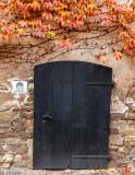 Vine and Door