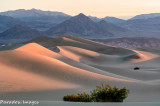 A more expansive view of the dunes at sunrise