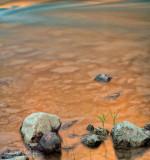 Saddle Canyon Morning Reflection - River Mile 47.5