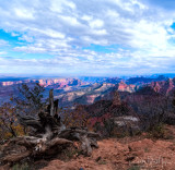 North Rim - View from Pt Imperial