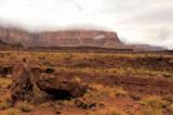 Rare Vermilion Cliffs Rainy Weather!
