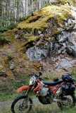 Olympic Peninsula Adventure Ride- North Side, Sol Duc Area on KTM 500EXC
