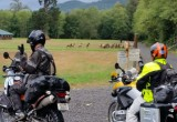 Olympic Peninsula Adventure Ride- Rainy West Side, Forks South, Elk Herd, Day 3