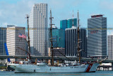2014 - USCGC EAGLE (WIX-327) arriving at downtown Miami's new waterfront Museum Park from Cozumel, Mexico stock photo #5267C