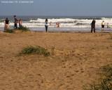 1144. Kinshaldy Beach, Fife