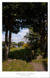1260. A lovely walk