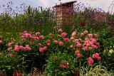 1304. Village fleurie