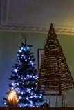1539. Christmas Tree night 2010