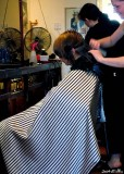 Murder-polis at the barber's shop