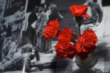 25 de Abril para sempre, fascismo nunca mais!