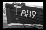 534. The Argo