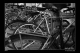 560. Bicycles