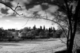 556. Cortachy Castle