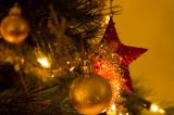 565. Living-room Christmas