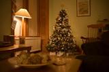 569. Merry Christmas