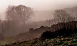 655. The mist descends