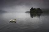 680. Swan Loch