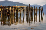 708. Remains of the pier