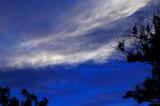 729. Evening sky