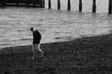 772. Shoreline stroll