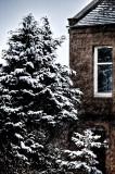1027. Snowfall