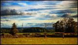 1042. Scottish pastoral