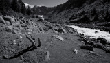 Landslide Devastation (DemingGl_080713-119-12.jpg)