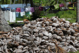 Walked by a huge pile of coconuts plus laundry