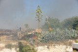 Man spraying water on dry shrubs and grass to prevent fire from reaching his house