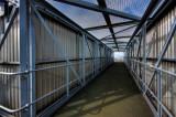 King George Dock footbridge IMG_4407.jpg
