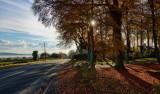 North Ferriby IMG_3247.jpg