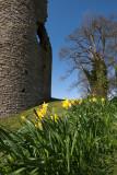Crickhowell Castle IMG_0425.jpg
