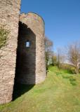 Crickhowell Castle IMG_0424.jpg