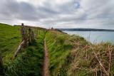 Pembrokeshire coast IMG_0310.jpg
