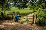 Roseberry Lane gate IMG_2117.jpg