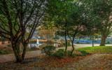Queens Gardens Hull IMG_7949.jpg