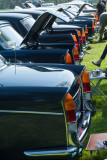 vintage motors at Normanby Hall IMG_1418.jpg