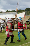 Knights in Battle IMG_1066.jpg