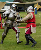 Knights in Battle IMG_1081.jpg