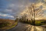 Willerby Low Rd IMG_0513.jpg