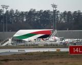 EK A380 fin