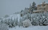 Edgemont Snow