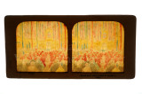 01 Messe Du St. Esprit 3 Nov- St. Chapelle Paris France Tissue Stereoview.jpg
