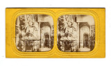03 French Tissue Stereoviews.jpg