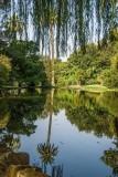 giardino inglese lago dei cigni