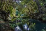 giardino inglese bagno di venere.jpg