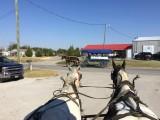 Amish Tour in Ethridge, TN